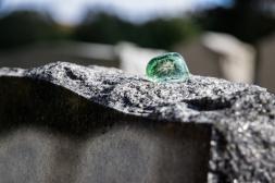 goldman_vivien_Memoir-in-Stone-02
