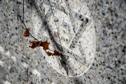 goldman_vivien_Memoir-in-Stone-05